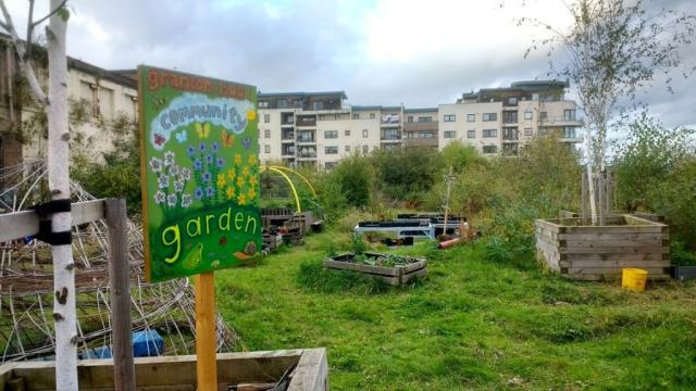 granton-community-graden-copyright-andy-dorin